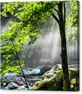 Sun Rays On Williams River  Acrylic Print