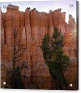 Sun Rising In Bryce Canyon Acrylic Print