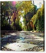 Sun Road Acrylic Print