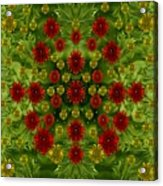 Sun Roses In The Deep Dark Forest With Fantasy And Flair Acrylic Print