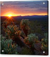 Sun Sets Over The Sonoran  Acrylic Print