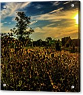 Sun Setting At Valley Forge Acrylic Print
