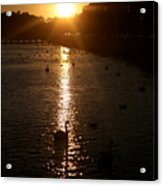 Sun Setting In Sheepshead Bay Acrylic Print