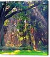 Sun Shower C Acrylic Print
