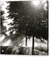 Sun Showers Acrylic Print