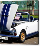 Sunbeam Tiger Acrylic Print