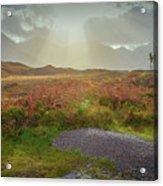 Sunbeams #g9 Acrylic Print