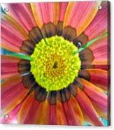 Sunburst Acrylic Print