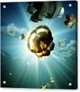 Sunburst Jelly Acrylic Print