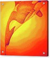 Sunburst Orca Acrylic Print