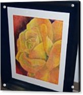 Sunburst Rose Acrylic Print