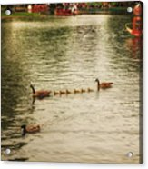 Sunday Afternoon In The Commons Acrylic Print