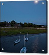 Sunfishes In Moonlight Acrylic Print