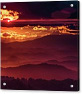 Sunflare Acrylic Print