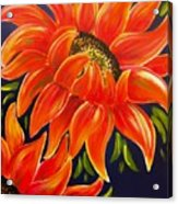 Sunflora Acrylic Print