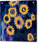 Sunflower 1 Acrylic Print