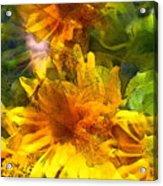 Sunflower 6 Acrylic Print