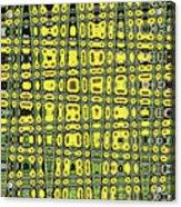 Sunflower #6595ew, Abstract, Acrylic Print