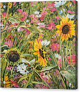 Sunflower And Cosmos Acrylic Print