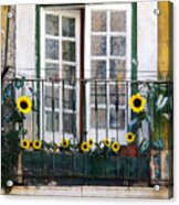 Sunflower Balcony Acrylic Print