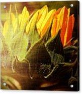 Sunflower Crown Acrylic Print