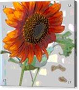 Sunflower Fun II Acrylic Print