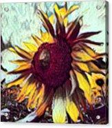Sunflower In Deep Tones Acrylic Print