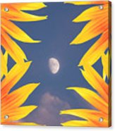 Sunflower Moon Acrylic Print