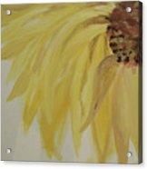 Sunflower Movement Acrylic Print