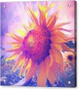 Sunflower Oil Painting Acrylic Print