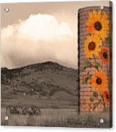 Sunflower Silo In Boulder County Colorado Sepia Color Print Acrylic Print