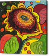 Sunflower Surprise Acrylic Print by Jennifer Lommers