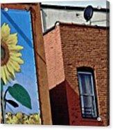 Sunflower Town Acrylic Print