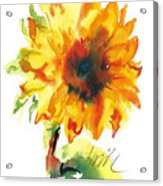 Sunflower With Blues Acrylic Print