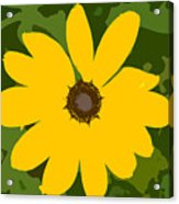 Sunflower Work Number 3 Acrylic Print