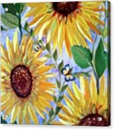 Sunflowers And Butterflies Acrylic Print
