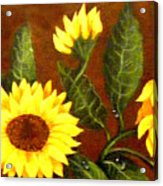 Sunflowers And Dewdrops Acrylic Print