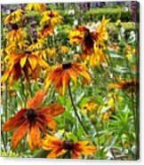 Sunflowers And Friends Acrylic Print