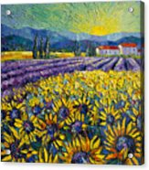 Sunflowers And Lavender Field - The Colors Of Provence Modern Impressionist Palette Knife Painting Acrylic Print