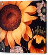 Sunflowers And More Sunflowers Acrylic Print