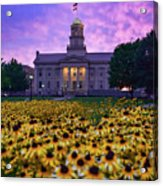 Sunflowers At The Old Capitol Acrylic Print