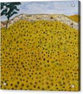 Sunflowers Field 1998. Acrylic Print