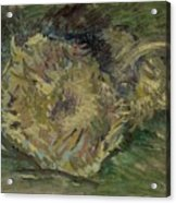 Sunflowers Gone To Seed Paris, August - September 1887 Vincent Van Gogh 1853  1890 Acrylic Print