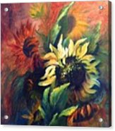 Sunflowers In Red Acrylic Print