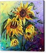 Sunflowers In The Rain Acrylic Print