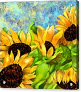 Sunflowers On Holiday Acrylic Print