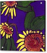Sunflowers On Purple Acrylic Print