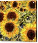 Sunflowers Summer Van Gogh Acrylic Print