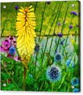 Sunlight At Kew Gardens Acrylic Print