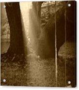 Sunlight On Swing - Sepia Acrylic Print